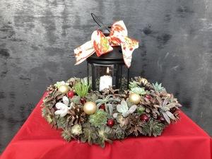 Wed Oct 13 Succulent Lantern